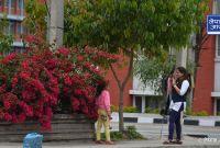 सिंहदरवारभित्र फक्रिएको फूल, मुर्झाएको विश्वास (फोटो फिचर)