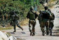 भारतको जवाफी कारबाहीमा ५ पाकिस्तानी सेना मारिएको दाबी