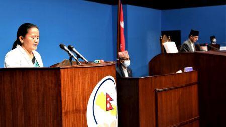 संसदमा पेस भयाे संविधान संशोधन विधेयक